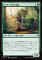 イクサーリの卜占師/Ixallis Diviner/XLN-192/C/緑