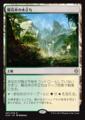 陽花弁の木立ち/Sunpetal Grove/XLN-257/R/土地