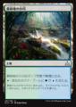 森林地の小川//RIX-191/U/土地