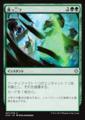 真っ二つ/Slice in Twain/XLN-207/U/緑