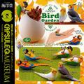 <海洋堂 >バードガーデン-鳥の庭-1 亜熱帯のコンパニオンバードたち
