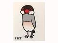 ダイカットステッカー 細い桜文鳥