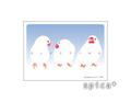 ポストカード 眠る3羽の白文鳥