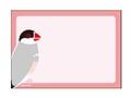 カラーメモ(桜文鳥)
