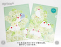 クリアファイル 白いバラと白文鳥(訳あり品)