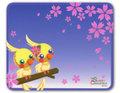 マウスパッド 夜桜お花見シロオカメインコ