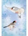 ポストカード 雪の妖精たち