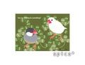 ポストカード クローバー(桜文鳥と白文鳥)