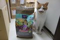 ハロー シニア11+ヘルシーサーモン(グレインフリー) 11歳ぐらいからの高齢猫用 1.6㎏