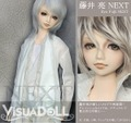 Visuadoll/藤井亮 NEXT(税・送料込)