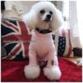 【再販】シンプルメローロンT 手作りワンコ服
