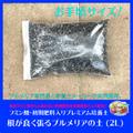 【便利な小分けパック】フミン酸と臭わない有機元肥を追加配合!  プルメリア専用培養土 「根が良く張るプルメリアの土」 (2L)
