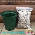 【カット苗の植付け用】プルメリア専用培養土とスリット鉢のセット(5号ロングスリッド鉢)