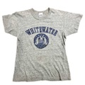 "〜70s COLLEGE Tee. ""WISCONSIN STATE UNIVERSITY"" FLOCKY PRINT."