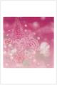 ポストカード「Bloom」