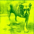 Alice In Chains / S.T  CD
