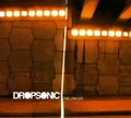 Dropsonic / The Low Life  CD