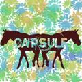 Capsule / S.T  LP