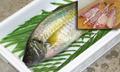 養殖シマアジ約1.5kg(3枚おろし)