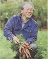 旬の菌ちゃん野菜組み合わせ