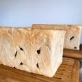 初音レーズン食パン