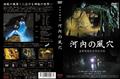 【DVD】 神秘の鍾乳洞 河内の風穴