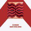 DJ BISON keep eyes open MIX CD
