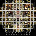 HVSTKINGS black focus CD
