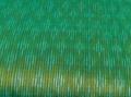 グリーンとオレンジの玉虫色