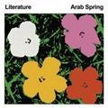 LITERATURE/ARAB SPRING