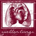 V.A.Swollen Lungs