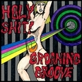 HOLY SHIT!・GROANING GROOVE/split