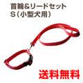 ハンドメイド首輪・リードセットS 小型犬用(6kg~10kg)
