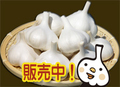 乾燥ニンニク(1kg)