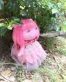 ピンクのドレス②