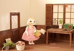 ドールハウス小さめ ¥6000~