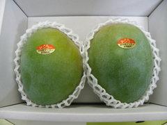 キーツマンゴー 1.5kg