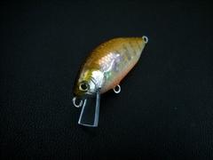 彩45S                            手割サザエ秋麗岩魚