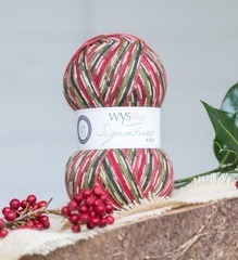 WYS 4Ply(886)  Hollyberry