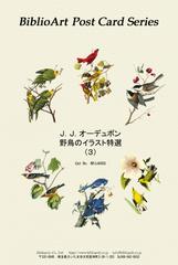 オーデュボン 野鳥のイラスト特選(3)