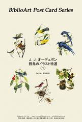 オーデュボン 野鳥のイラスト特選(1)