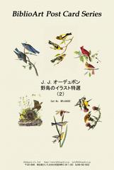 オーデュボン 野鳥のイラスト特選(2)