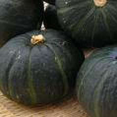 かぼちゃ10Kg(送料込)