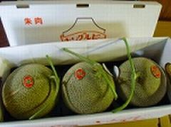北海道赤肉メロン3玉セット