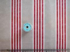 SZ916498A Ticking Stripe No.3杉綾織 A