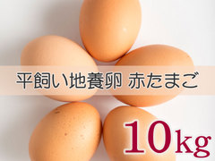 たまごづくし B-④ 平飼い地養卵赤たまご 10kg