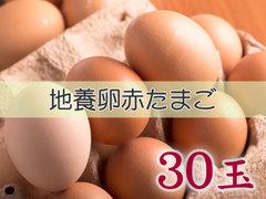 たまごづくし A-② 地養卵赤たまご 30玉