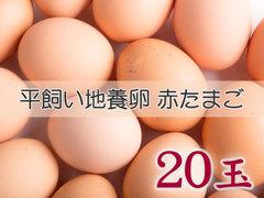 たまごづくし B-① 平飼い地養卵赤たまご 20玉