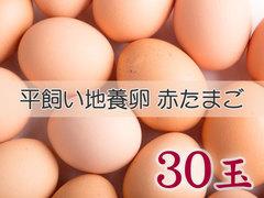 たまごづくし B-② 平飼い地養卵赤たまご 30玉