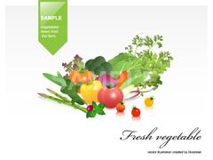 No.622 野菜のイラスト 1 【AI】